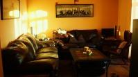 Canapele din piele maron