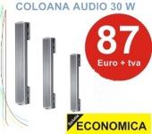 IC Audio TSC 30 700 T boxa de exterior