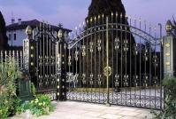 sendone fier forjat pentru porti garduri balcoane balustrade grilaje