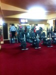 VAND STEPPER PROFESIONAL LIFE FITNESS Si 95 SILVER LINE