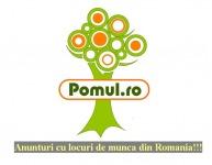www.Pomul.ro   anunturi locuri de munca